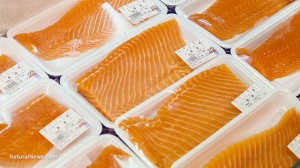 Editorial-Use-Packaged-Salmon-Store